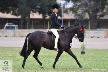 Margot Haynes rode her own, David Quayle and Catherine Gale's nomination, 'Lily's Pageant' to take second place in the class for Novice Pony13.2-14hh.