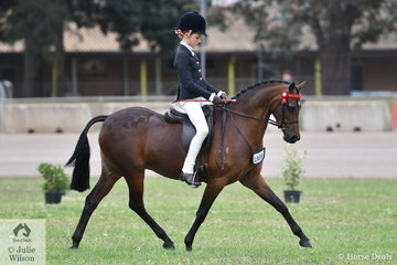 Elizabeth Taylor rode the Taylor Family's, 'Emyella Pure Heaven' to take third place in the class for Novice Pony 13.2-14hh.
