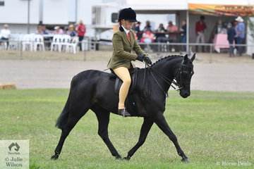 Sueanne Vale is pictured aboard Jan Langley's home bred, 'Langtree  In The Dark' during the class for Novice Show Hunter Pony 12.2-13hh.