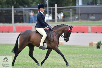Maia Warren rode her, 'Westlake Counting Stars' to win the class for Novice Pony 12.2-13hh.