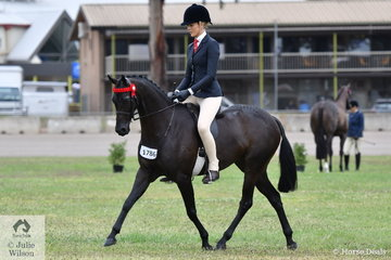 Ali Berwick stepped aboard the J & R Equestrian and Tia McKenzie nomination, 'Rosedale Darlington' to win the class for Novice Pony 13.2-14hh.