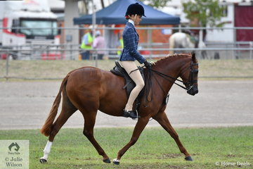 Teneille Tuoro's, 'Astral Mid Summer Nights Dream' took fifth place in the class for Novice Show Hunter Pony 13.2-14hh.