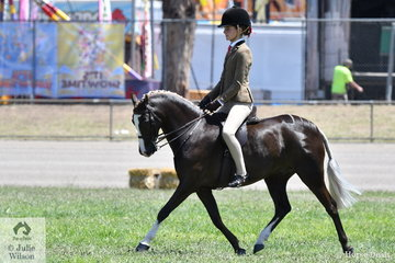 Kate Kyros, another visitor from South Australia rode her well performed, 'Owendale Beesting' to claim the Small Show Hunter Pony Reserve Championship.