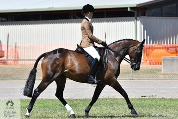 Brynie Lee certainly likes the Hunters. She is pictured aboard the Lee Family and Jessica Sharp's nomination, 'Mainstream First Glance' that won the class for Novice Show Hunter Galloway 14.2-15hh and went on to claim the Best Novice Show Hunter Galloway award.
