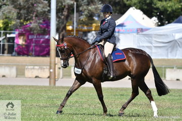 Kelly Hull rode her own, Jean and Brent Hull's, 'KL Embers' to win the class for Ridden ANSA 14-15HH.