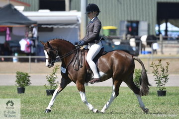 April Westcott rode her eye catching and good working, 'Imperial Jester' to win the class for Open Show Hunter Pony 12.2-13hh.