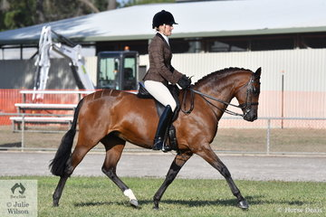 Sarah McMaster rode her 'Beauparc Dreams' to win the class for Lady's Show Hunter Galloway.