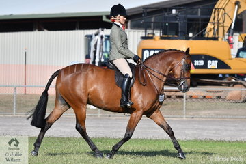 Chanele Hunter-Cooke is having a successful day in the hunting field. She is pictured aboard the CHC Stables and T Jones nomination, 'Royal Command of Sefton' that won the class for Open Show Hunter Galloway 14-14.2hh and went on to claim the Show Hunter Galloway Championship.
