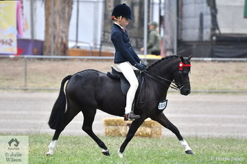 Isabel Daly rode Elizabeth and Rhonda Daly's, 'Dalbrae Vegas' to win the class for Open Pony N.E.11.2hh.