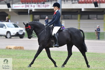 Chanele Hunter-Cooke rode the CHC Stables and Lyn Warburton nomination, 'Daisy Patch Soul Star' to win the class for Lady's Galloway and take second place in the Open Lightweight 14-14.2hh class.