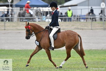 Jessica Callus rode her well performed, 'Mirinda Princess Perfect' to win the class for Open Pony 11.2-12hh.