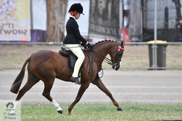 Ella Manning rode the Margot Haynes, David Quayle and Catherine Gale nomination, 'Newington Tinkerbell' to take second place in the class for Open Pony 11.2-12hh.