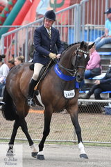 Stephen Gladstone rode his beautiful, 'Heartbreaker' to win the class for Gelding Showing Thoroughbred Qualities Over 15hh.