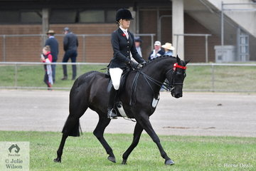 Brynie Lee rode the BR Show Team and Jeremy Roberts' nomination, 'Napoleon' to take second place in the class for Open Heavyweight Galloway 14-14-2hh.