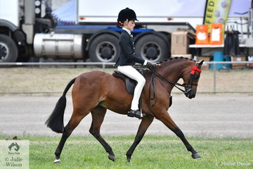 Elizabeth Taylor rode Marcia Beard's nomination, 'Rhyl Monarque' to win the class for Open Pony 12-12.2hh. Later in the day Marcia rode this pony to be declared Champion Ridden Riding Pony and Elizabeth was declared Champion Girl rider under 13 years.