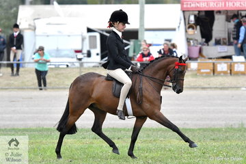 Kate Kyros rode her own and the Universal Stables', 'Braeburn Heavenly Soprano' to second place in the class for Open Pony 12-12.2hh. Later in the day Kate was delaced Champion Girl Rider 13 and under 18 years.