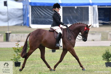 Briony Randle rode her own and Judy Ivory's nomination, 'KP Simply Exquisite' to win the class for Open Lightweight Galloway 14.2-15hh.