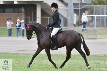 Sarah Ryan rode her very well performed, 'Holly's Galaxy' to take second place in the class for Open Lightweight Galloway 14.2-15hh.