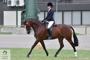 Bronte Dagg rode her, 'EBL Lust' to claim fourth place in the class for Open Hack 15-15.2hh.