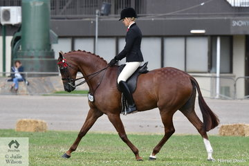 Ali Berwick rode her own and Emma Barkla's nomination, 'Royal Oak Foreign Affairs' to take third place in the class for Open Hack 15-15.2hh.