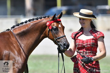 Regular and successfull Canberra exhibitor, Brooke Stevenson is pictured with her Champion Led Riding Pony Gelding, 'Bamborough Soloist'.