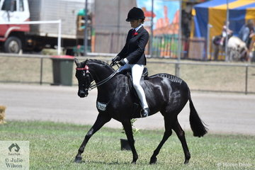 Renae Dorney's , 'Nottingham Love Song' won the class for Open Pony 13-13.2hh on day three and the first public show day of the 2019 ACTewAGLRoyal Canberra Show.