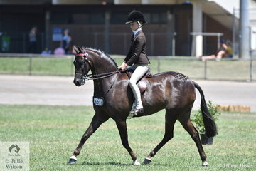 Poppi Plumb rode the beautiful , 'Calvin Park Tiny Dancer' to take third place in the class for Open Pony 13-13.2hh.
