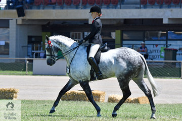 Kaitlin Labahn-Meyland is really developing a super partnership with the outstanding and eye catching, 'Rolex II'. Today they took second place in the Thoroughbred Gelding Hack class and the Open Over 16.2hh.