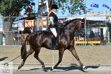 Brynie Lee has been winning Rider classes up through the age groups and now at just 18 she won the class for Lady Rider 18 AU 21 Years and went on to be declared 2019 ACTewAGL Royal Canberra Show Champion Lady Rider.