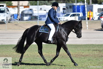 All the way from Mt Barker in South Australia, Janita Edwards has had a great show with her, 'Chalani Tempo' that won the class for Ridden Australian Stock Horse Stallion this morning.