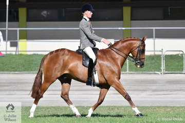 Campbell Jones from Scone won the class for Gentleman Rider 18 AU 21 Years.