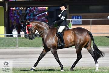 No surprise result. Adam Oliver, another youngster to have been successful through the age groupe won the class for Gentleman Rider 21-40 years and went on to be declared Champion Gentleman Rider.