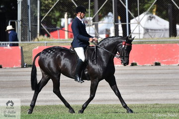 Popular and successful Victorian rider, Clint Bilson won the class for Gent Rider Over 40 and went on to be declared Reserve Champion Gentleman Rider.