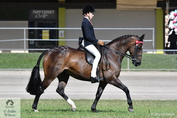 Hunter Taylor rode well to win the class for Boy Rider 15 AU 18 Years.