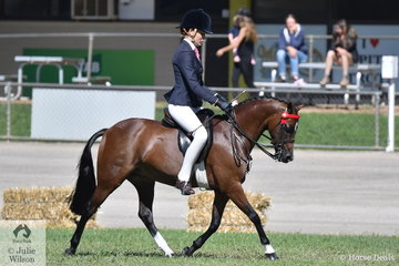 Michelle Paynter's, 'Rokewood Tiger Moth' won the class for Pony Hack Gelding N/E 12.2hh.