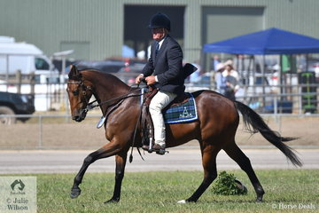 Bill Peadon rode his own and Julie Peadon's gelding, 'Starwaltz Verdict' to claim the 2019 ACTewAGL Royal Canberra Show Working Australian Stock Horse Championship.