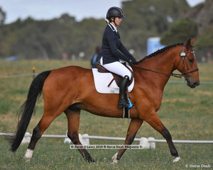 """COOL MAC GOOL"" in the EV65 Dressage Phase ridden by Erin Young"