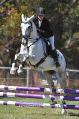 """MEMPHIS"" ridden by Karen Nielson in the EV 65 Showjumping Phase"