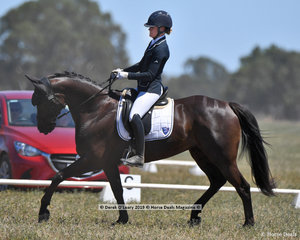 """EQUINEAFFAIR MYSTIQUE"" ridden by Madeleine O'Callaghan in the CCN 1 Star Dressage Phase"