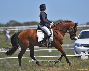 """WILLTONY GARNETT"" in the CCN 2 Star Dressage Phase ridden by Leesa Clausing"