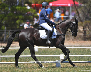 """PATANGA LODGE BENTLEY"" ridden by Sheridan Wilson in the CCN 2 Star Dressage Phase"