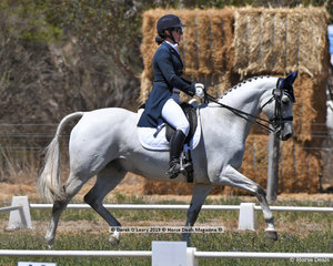 """KLYDOSCOPE"" ridden by Claire McDermott in the CCN 2.5 Star Dressage Phase"