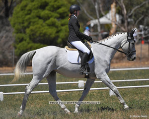 """ABSTRACT LAD"" ridden by Sarah Ward in the CCN 2 Star Dressage Phase"
