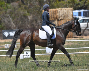 """LINE OF FLITE"" ridden by Lauren Jago in the CCN 2 Star Dressage Phase"
