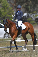 """PEREGRIN TOOK"" ridden by Sarah McInnes in the CCN 1 Star Dressage Phase"