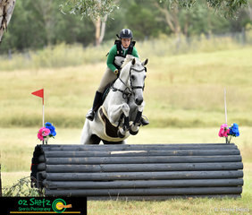 With no intention to touch the jump, Anneka Saunders and Charlton Ultra tuck up tight over the EvA95 cross country fences at the Sydney International Equestrian Centre.