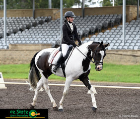 Rebecca Muller and her 8 year old Warmblood x Australian Stock Horse, Mini Cooper debut at their first One Day Event together at the Sydney Eventing Summer Classic.