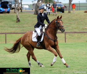 Deciding Vote enjoyed being out on the show jumping course with rider Inge Sildnik in the EvA60 on the first day of the Sydney Eventing Summer Classic. .