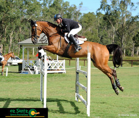 Cooley Down Under was not touching the poles in the CCN2 Star Show Jumping course with rider Tim Boland at the Sydney Eventing Summer Classic.