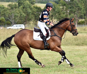 Cantering for home is Sam Woods and Hashtag Trouble, having one of the quicker rounds out on cross country only incurring 3.6 time penalties in the CCN2 Star at the Sydney Eventing Summer Classic.